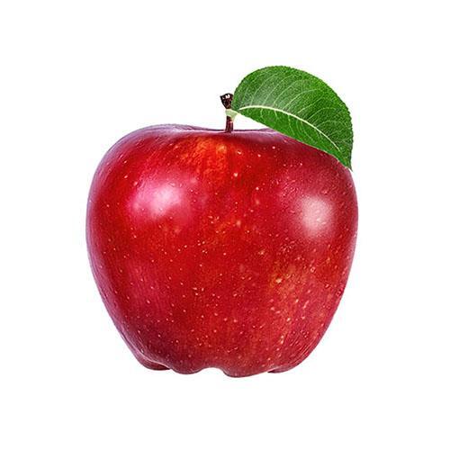 תפוח עץ חרמון