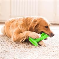 מנקה שיניים צעצוע לבעלי חיים