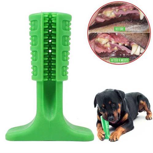 עצם גומי שתצחצח את שיניי הכלב שלכם
