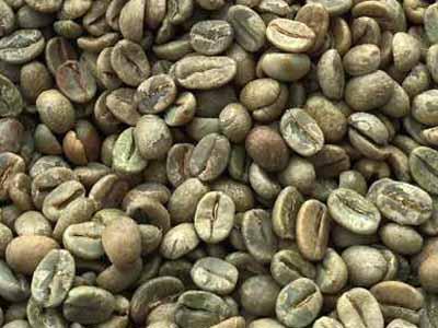 קפה ירוק הודי צ'רי - Indian Cherry AA