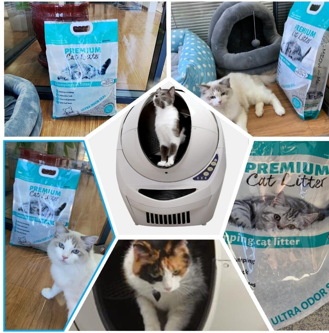 מסלול חול מתגבש פרימיום ל3 חתולים + ליטרובוט מתנה