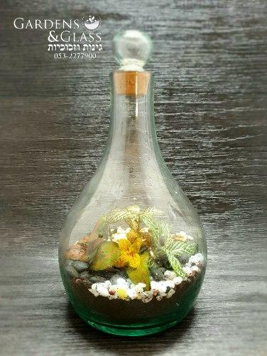 טרריום בלון זכוכית ממוחזרת