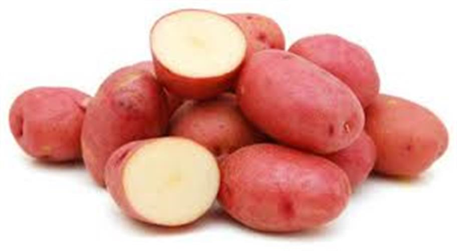 תפוח אדמה אדום אורגני