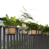 אדניות מדף מברזל לתליית עציצים