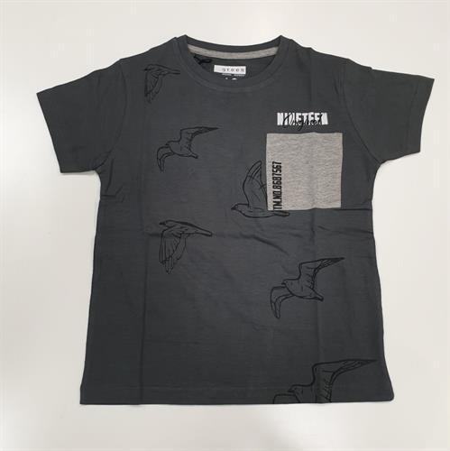 חולצת בנים ציפורים וכיס