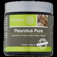 -- פלאורוטוס פיור - PLEUROTUS PURE -- מכיל 60 כמוסות צמחיות HPMC, מיקוליביה