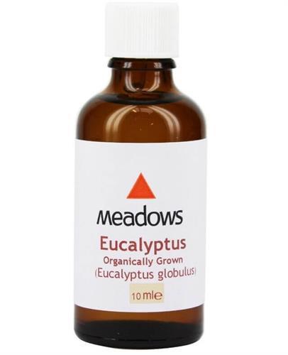 """שמן ארומתרפי אקליפטוס גלובולוס 10 מ""""ל - Eucalyptus Globulus Essential Oil 10cc"""