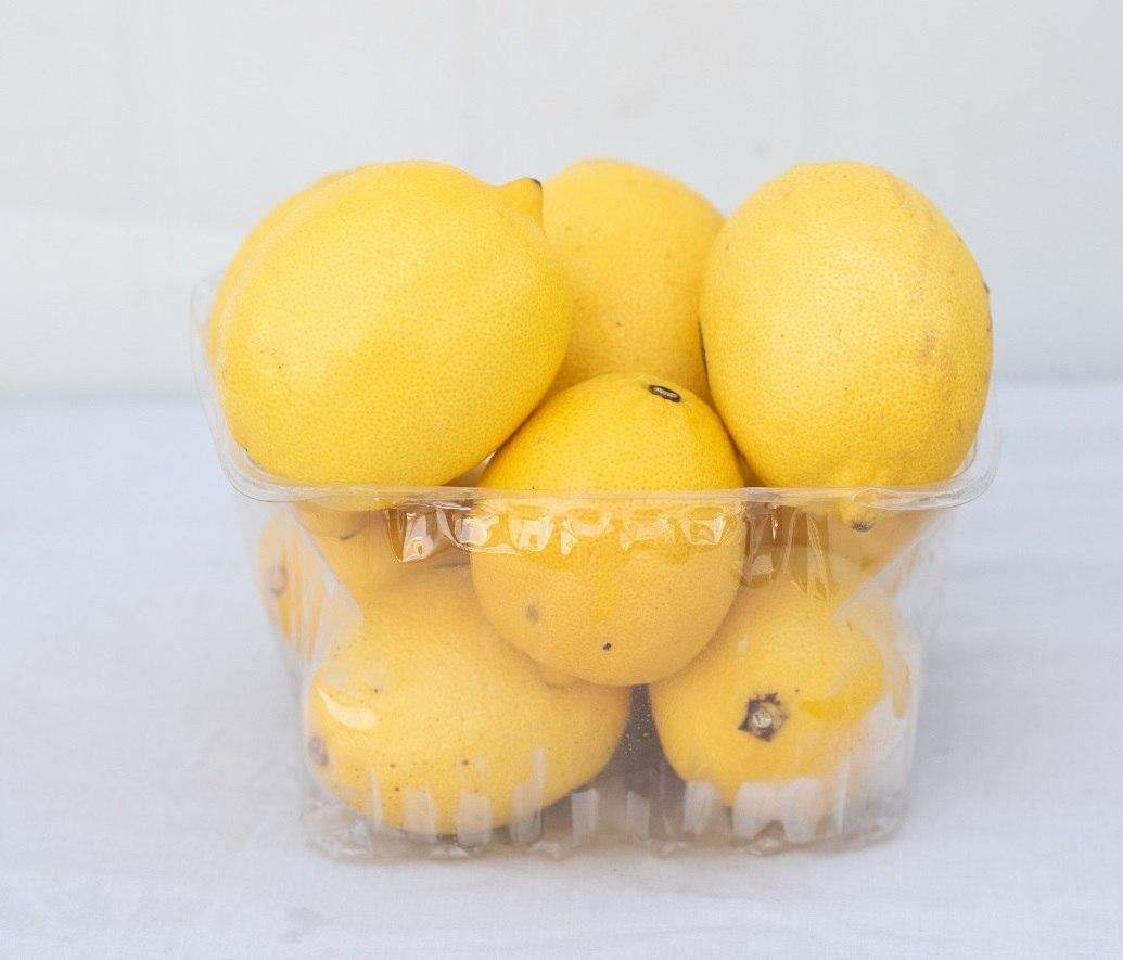 """לימון 1.5 ק""""ג"""