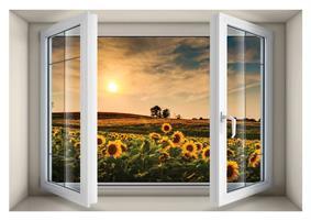 חלון בנישה שדה חמניות דגם 5006