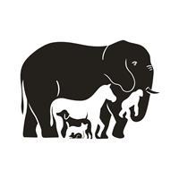 מדבקת קיר אוסף בעלי חיים