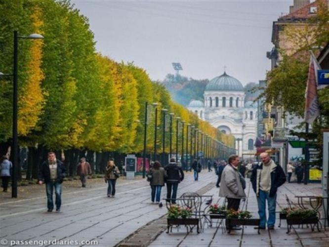 הקסם הבלטי - ליטא לטביה ואסטוניה