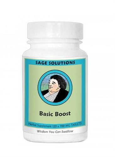 Basic Boost