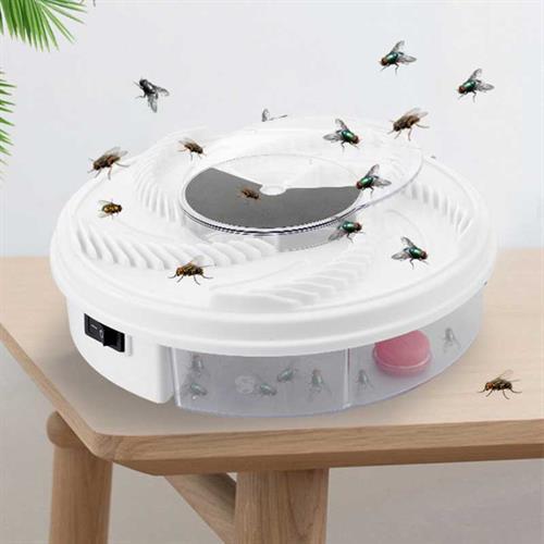 קוטל זבובים, יתושים וחרקים מעופפים