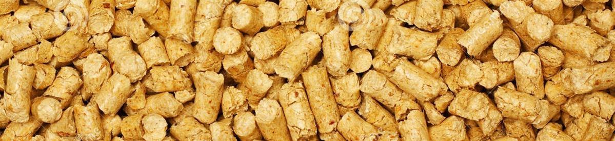 חול שבבי עץ - המחסן - מוצרים לבעלי חיים