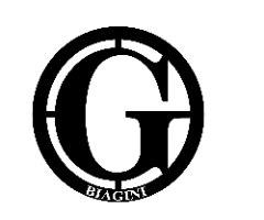 תיק אופנה BIAGINI זיפר