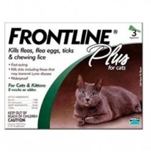 אמפולות פרונטליין לחתול