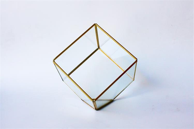 טרריום זכוכית-מרובע