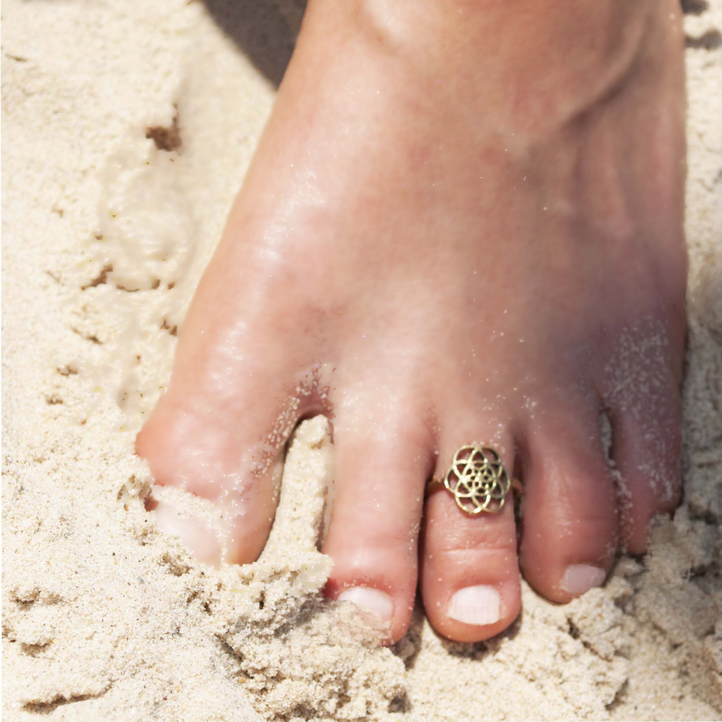 טבעת רגל זרע החיים בראס