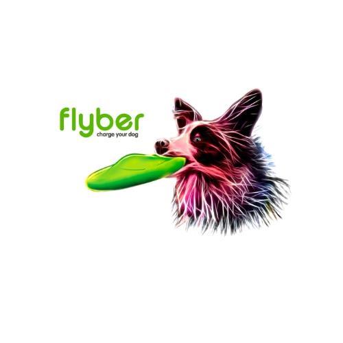 פלייבר - flyber