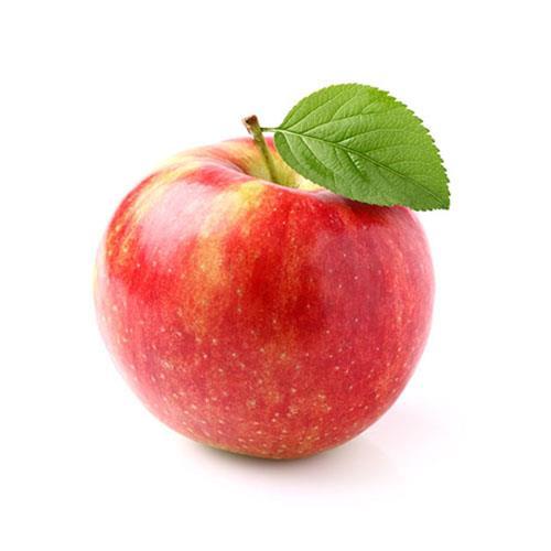 תפוח עץ יונתן