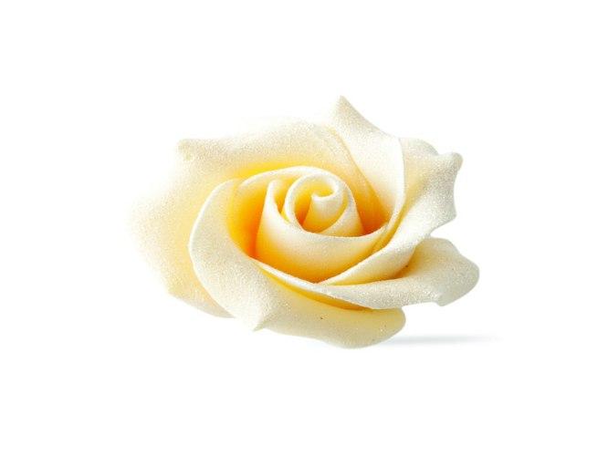 קישוט ורד  מריר/לבן 180 יח'