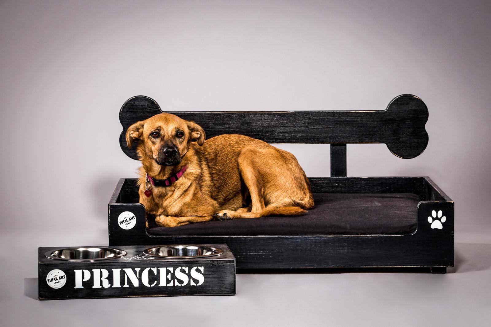 מיטה לכלב- בונזי L שחור ווש