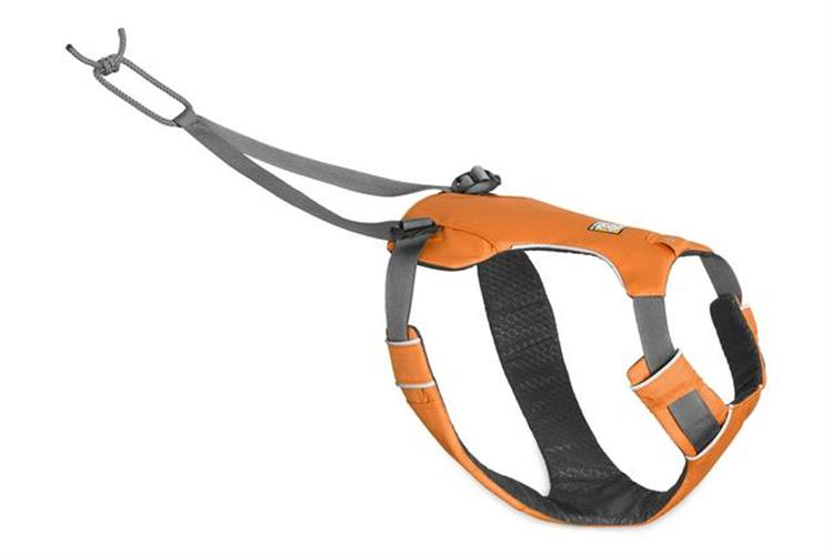 רתמה גרירה לכלב בלבד OMNIJORE DOG JORING HARNESS