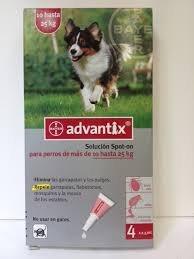 """אמפולות אדוונטיקס לכלב 10-25 ק""""ג"""