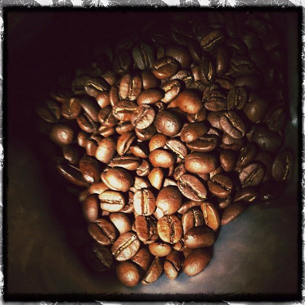 קפה ירוק תערובת Sandalj - Toscanini Blend