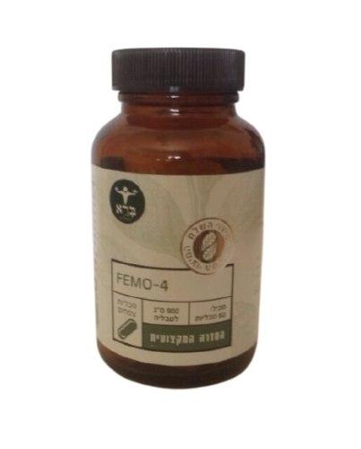 FEMO 4