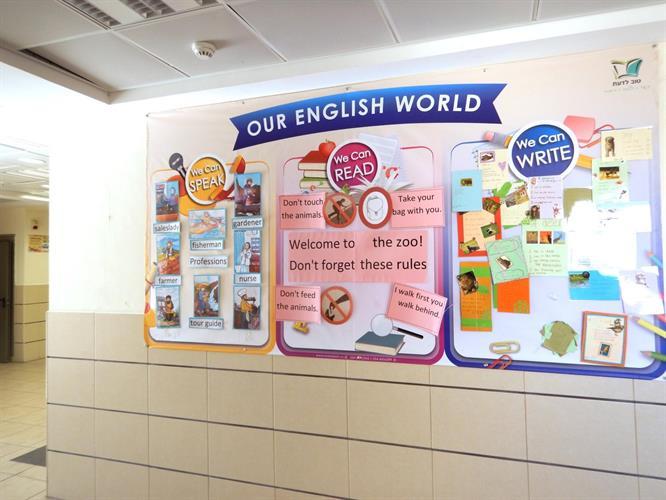 קיר תוכן פעיל ענק באנגלית לבית הספר | Giant Dynamic Wall Decoration