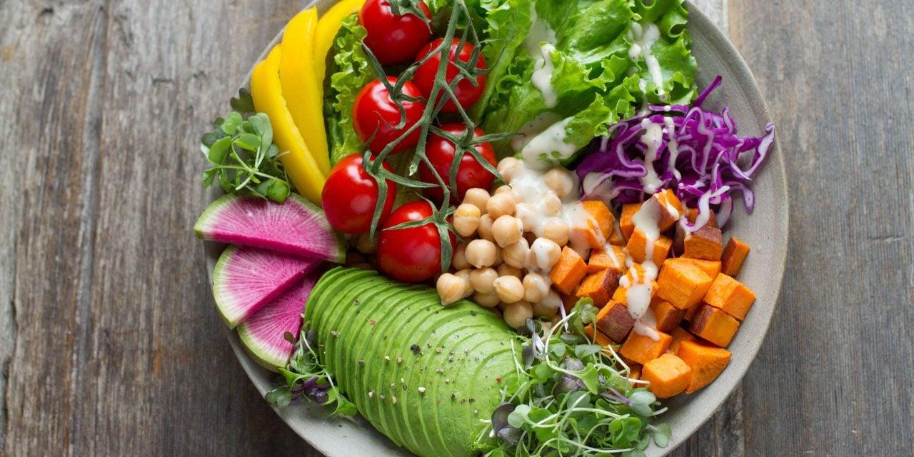 זוג-חטיפי חלבון טבעוני אול אין | ALLIN