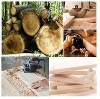 מתלה מפתחות לתלייה בשילוב איחסונית עץ דקורטיבי