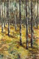 עצים ביער 2