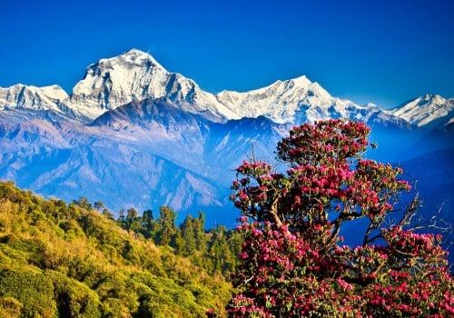 נפאל המרהיבה – חוויה שלא תישכחו לעולם!