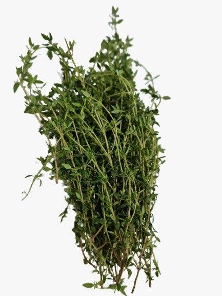 קורנית (טימין) אורגנית - מארז 40 גרם