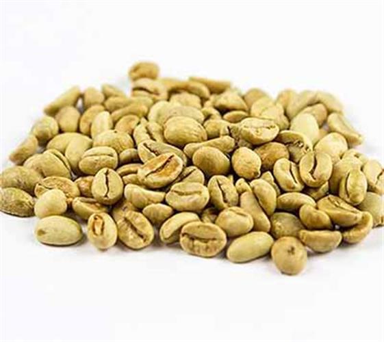 קפה ירוק הודי מונסון מלאבר - Indian Robusta Monsooned Malabar - AA
