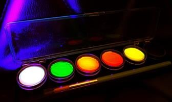 פלטה 6 צבעים 8 גרם כל צבע      NEON Cameleon