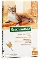 """אמפולות אדוונטג נגד פרעושים לחתול עד 4 ק""""ג - ADVANTAGE CAT UNDER 4KG"""