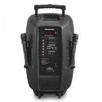 """רמקול בלוטוס מוגבר 15"""" עם 2 מיקרופונים BT, אקולייזר ורדיו FM תוצרת Pure Acoustics דגם PMW 2015"""