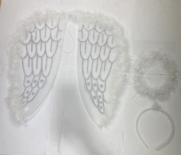 כנפיים + קשת מלאך