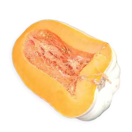 יח' דלעת  (טריפולי)  אורגני כ- 1/2 קג