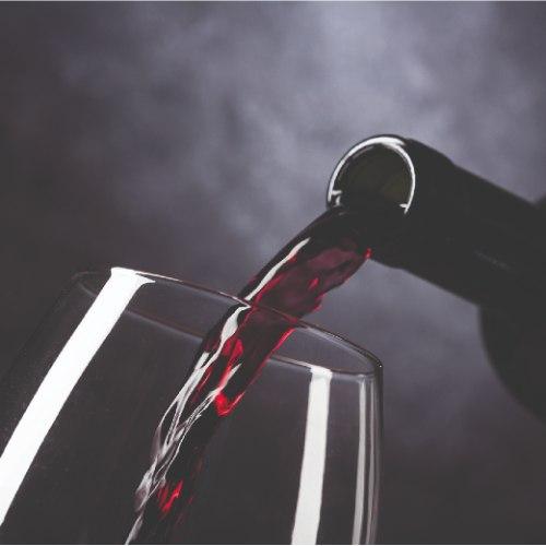 תוספת של טעימות יין בשילוב הסבר