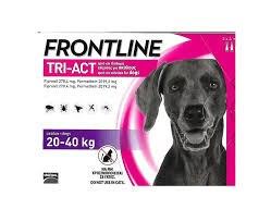 """אמפולות נגד פרעושים וקרציות פרונטליין טרי אקט לכלב במשקל 20-40 ק""""ג - FRONTLINE TRI ACT"""