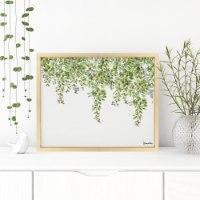תמונה של עלים ירוקים
