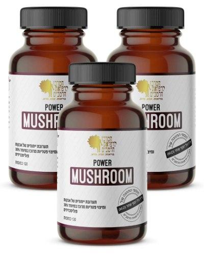 שלישיית Power Mushroom תוסף פטריות מרפא* עוצמתי | 120 כמוסות