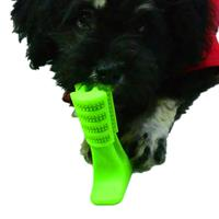 עצם שתצחצח את שיניי הכלב שלכם