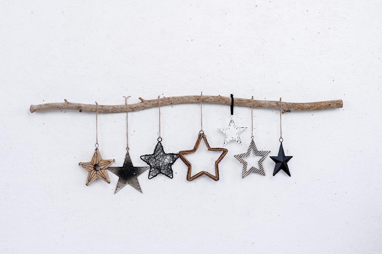 ענף של 7 כוכבים