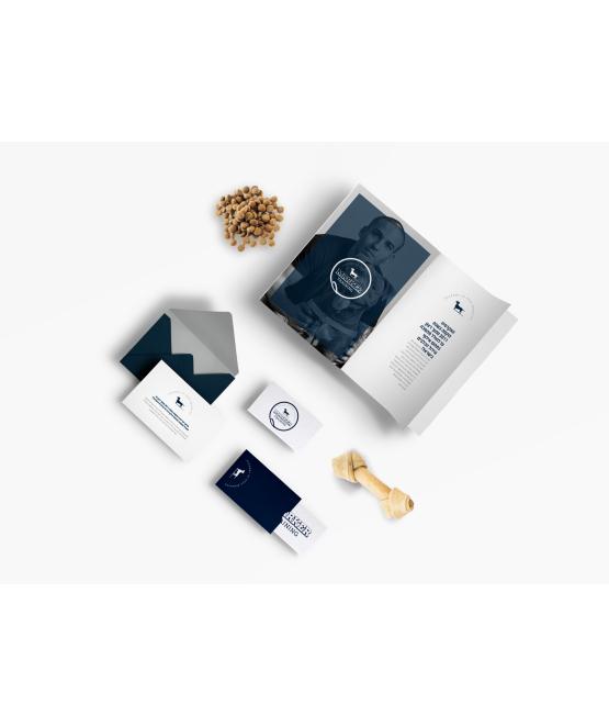 עיצוב לוגו וחבילת מיתוג בסיסית לעסק