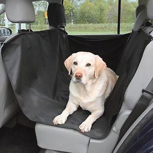 כיסוי לרכב לכלב